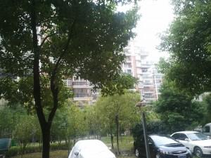 Vue de la résidence depuis la fenêtre de mon bureau temporaire