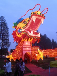 Dragon lumineux
