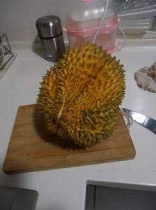 Durian mûr